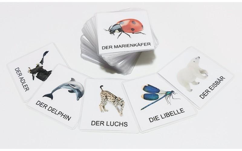 Živali sveta v nemškem jeziku